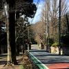 坂道探訪 国分寺崖線の坂道・世田谷(1)