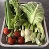 [レシピ]意外なおいしさに驚き「野菜くずと皮でとる野菜だし」(ホットクックでも作れます)