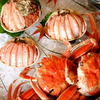 期間限定の美味 松葉ガニのメス「せこ蟹(コッペ蟹)」