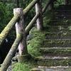 別荘DIY 憧れの苔むした外階段にする【後半】