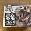 【ダイソー】恐竜化石玩具