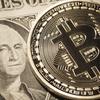 【20代必見】仮想通貨でお金持ちになったら何に使うべき?