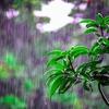 【セブの気候】雨季が始まった!旅行中に気を付けたいこと&雨季でつらいこと