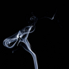 タバコ1本当たりで失われるビタミンの謎