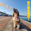 【新型コロナ】香川県で初の感染確認