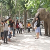 プノンペン郊外のタマウ動物園。