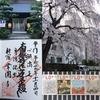 西新宿「常圓寺(常円寺)」は、寺ヨガ・御朱印・映画など女子注目の癒しスポット