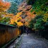 京都・南禅寺へ紅葉を見に行ってきた
