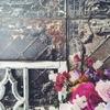 パリの壁紙