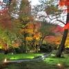 京都 嵐山「宝厳院」で夜のライトアップを楽しむ!陽が落ちていくにつれ幻想的に変化していく世界