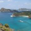 小笠原諸島が世界遺産に選ばれた隠された理由と 魅力とは?