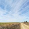 スペイン巡礼18日目:メセタでメディテーション(瞑想) Flomista 26km