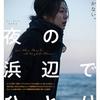 「夜の浜辺でひとり」(2017)