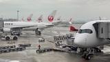 【羽田空港】ターミナルを間違えて飛行機乗り逃した後にやったこと