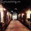 鎌倉観光vol.2★江ノ島岩屋で洞窟観光と高徳院・鎌倉大仏!