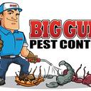 Insects Control's