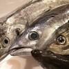 本日の漁港直送のお魚さんたち!