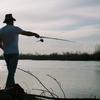 初心者でも楽しめる海釣り公園!効率よい移動方法と楽しみ方。