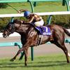 JRA「G1馬」なのにモズスーパーフレア北九州記念(G3)は軽ハンデ!? 明暗分かれた新馬戦勝ちのみで「G1馬」扱いのアノ馬