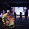 花×デジタルアート!!光と花のシンフォニー、日本大賞賞品ベンツA180、フラワーカフェ&バー『世界らん展2019』