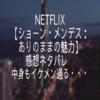 Netflix【ショーン・メンデス:ありのままの魅力】感想ネタバレ 中身もイケメン過ぎる・・・