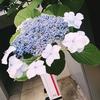 代々木上原不動産 賃貸 毎日速報!!6/19(火)
