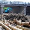 流木20万トン撤去始まる 再利用には課題も