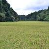 日本人の自然観とバウンダリー