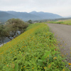 琵琶湖+余呉湖