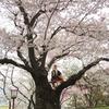 タニワキ日記(4月18日)
