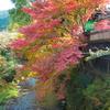 福岡県朝倉市 秋月の紅葉