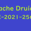 Apache Druid 「CVE-2021-25646」の再現と修正点の確認
