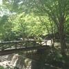 【自然に囲まれたキャンプ場】山城町森林公園へようこそ