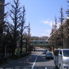 北参道・神宮外苑