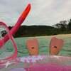 西表島7イダの浜水中写真2