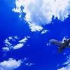 航空運賃国際線。直行便よりも経由便のが安いのはなぜだ!
