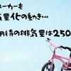 バイクの小排気量化は外車メーカーもか?将来的に250cc~クラスが熱い!?