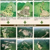 地震と山地災害