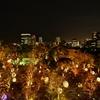 『チームラボ 福岡城跡 光の祭』は体験できるアートだったので子どもと楽しめた 福岡県福岡市中央区城内