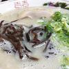 高岡で一番美味い博多ラーメン「山桜」に行ってきた!
