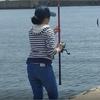 三重県波切港 家族釣り サビキ、アジ、サバ