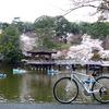 奈良県おすすめ桜(お花見)サイクリングコース~日本さくらの名所100選 奈良公園-郡山城編~