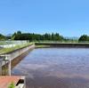 魚啓の農業用調整池(仮称)(静岡県御殿場)