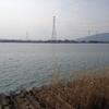 木曽川立田下流釣行 3月16日