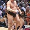 白鵬、日本へ帰化の意向…引退後親方になるため