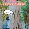 【ポレポレ旅行記】海だけじゃない!沖縄やんばるの森探検隊《4日目@再訪やんばるの森》