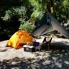 昭和の森キャンプ1泊2日(1日目)