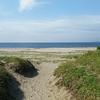 家族連れにおすすめ!内房のきれいなビーチ~富津海水浴場~【千葉・房総日帰りの旅~4】
