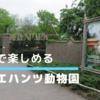 オランダでパンダを唯一見ることができるアウエハンツ動物園はお勧めの観光スポット。
