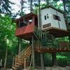 夢のツリーハウス落成式